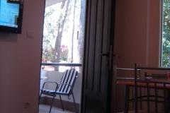 agava-dnevna2
