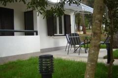 agava-terasa1